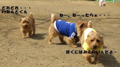 20120314_1129_031411_2