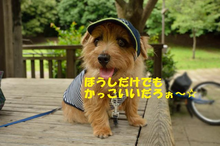 20120623_1318_0825761jpg_3