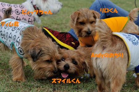 20121020_1118_091jpg