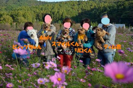 20121020_1556_011jpg